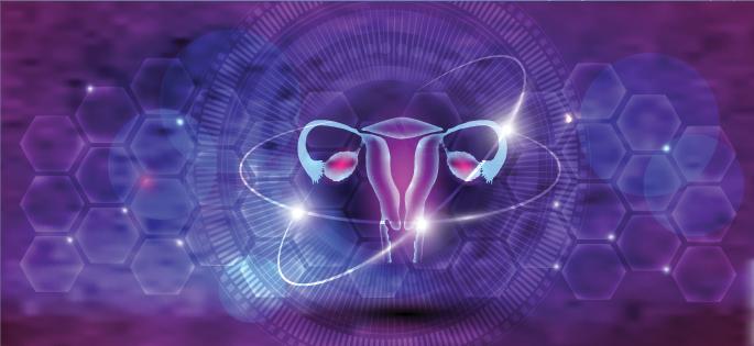 visualization of a uterus